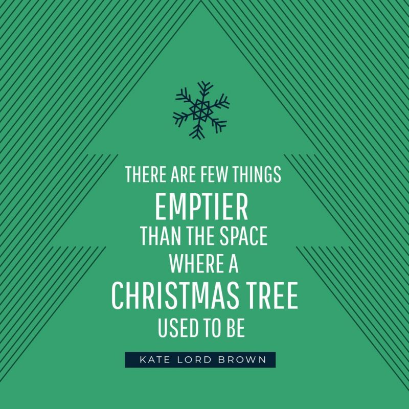 25 Christmas Quotes for Festive Holiday Social Media Posts - green christmas tree graphic