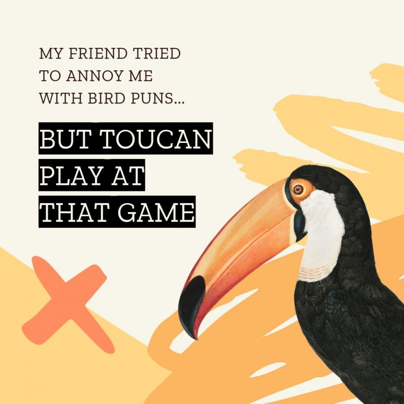 Toucan Bird Pun Quote Template by Easil - January Content Calendar Ideas + Templates