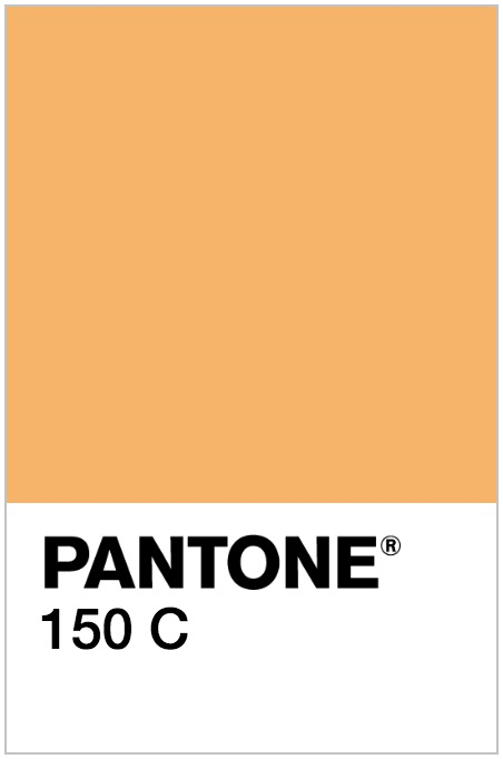 Pantone 150 C Image - January Content Calendar Ideas + Templates