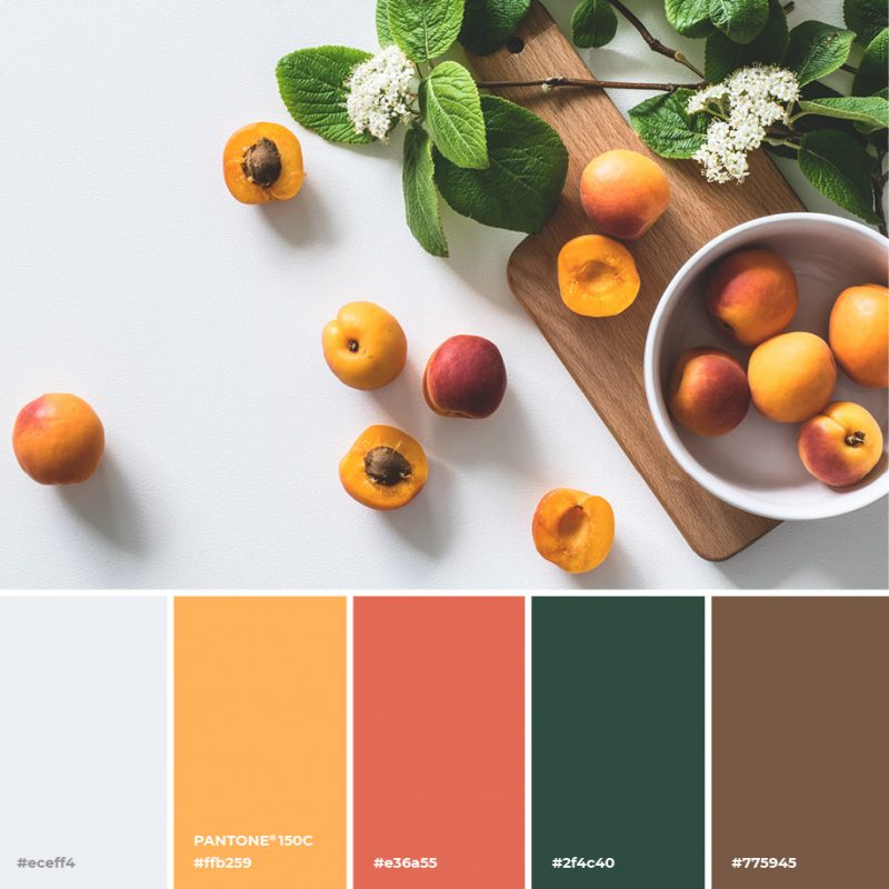Apricot Pantone image by Easil - January Content Calendar Ideas + Templates