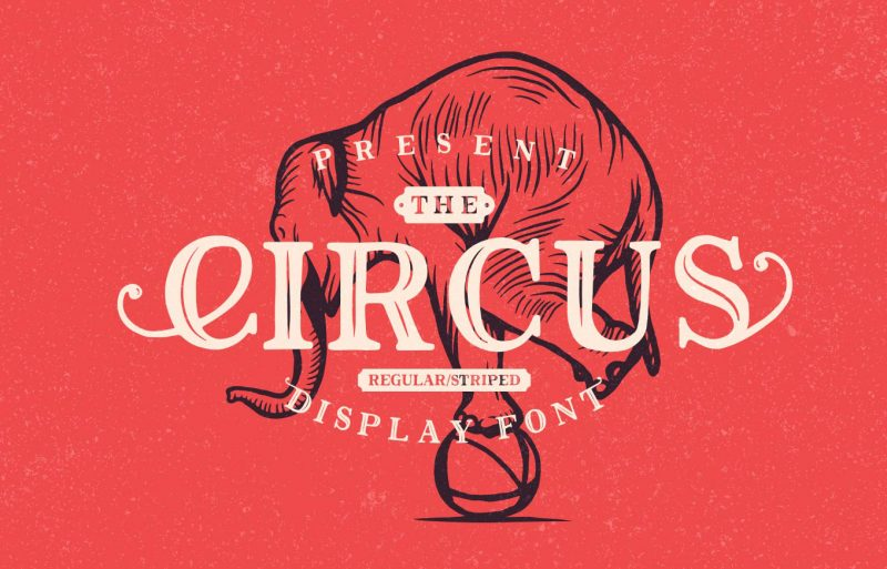 Circus Font - 85 Cool Free Fonts for the Best DIY Designs in 2019