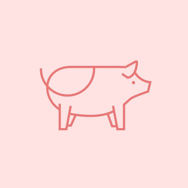 Pig Day graphic template - March Content Calendar Ideas + Templates
