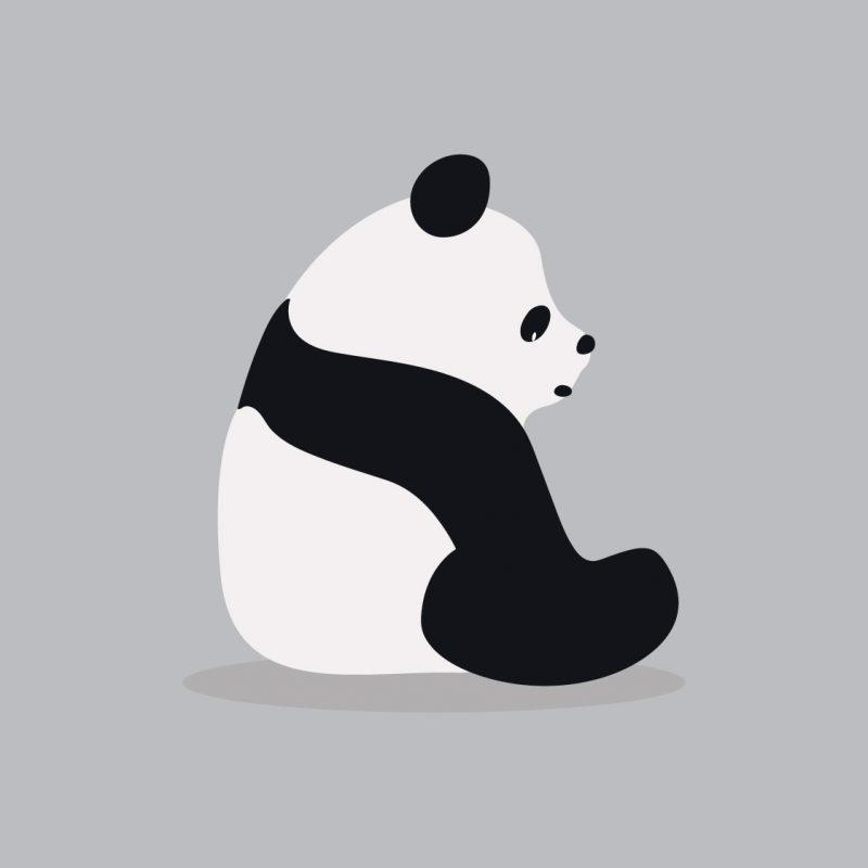 Panda Day graphic template - March Content Calendar Ideas + Templates
