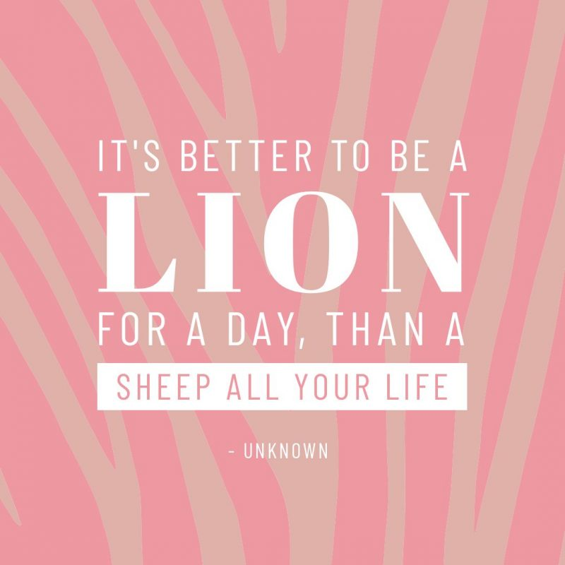 Lion quote template by Easil