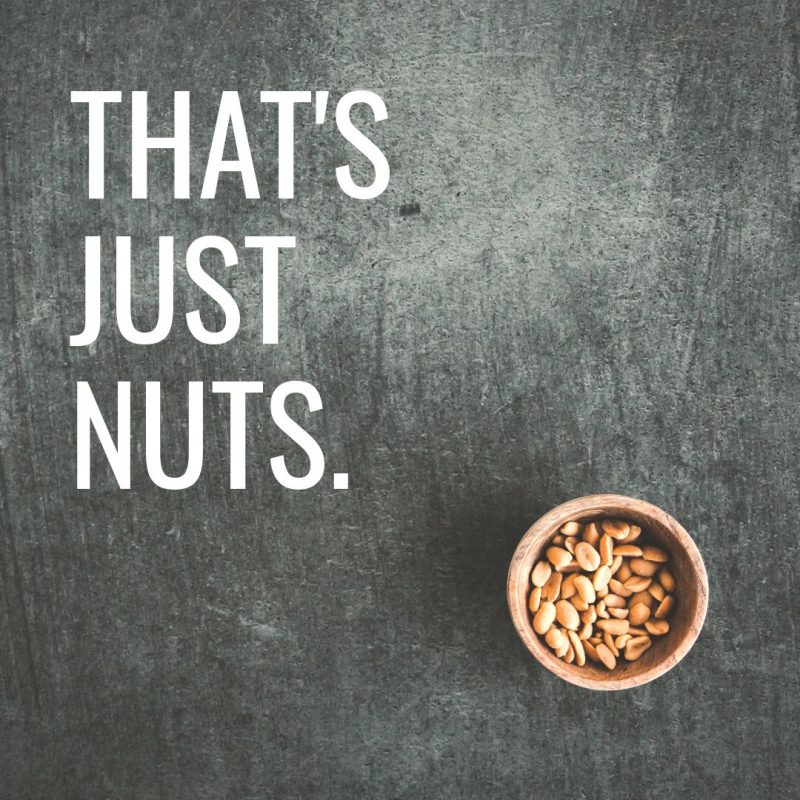 That's Just Nuts Template by Easil - August Content Calendar Ideas and Templates.