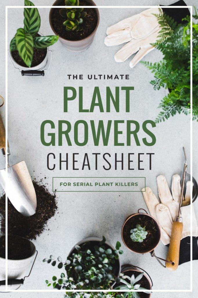 Ultimate Plant Growers Cheatsheet - Pinterest Templates 10 Ways - Hack Visual Design Series