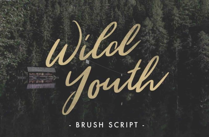 Wild Youth Free Font - 93 Best Free Fonts to Create Stunning Designs