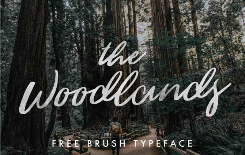 The Woodlands Free Font - 93 Best Free Fonts to Create Stunning Designs